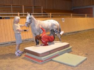 Reiterin fällt vom Pferd