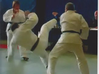 jujutsu gefegt